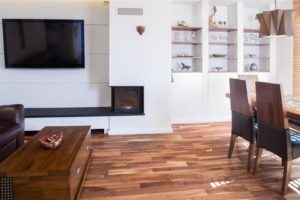 Home video in modern house